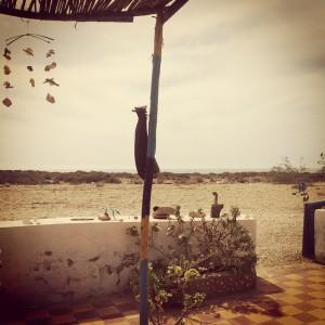 Middle of nowhere meditation peace morocco essaouira relax namaste lifehellip
