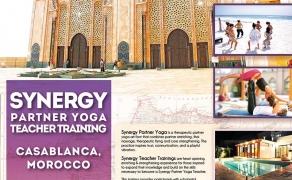 Synergy partner Yoga teacher training