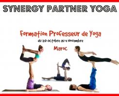 Devenez professeur de Synergy Partner Yoga